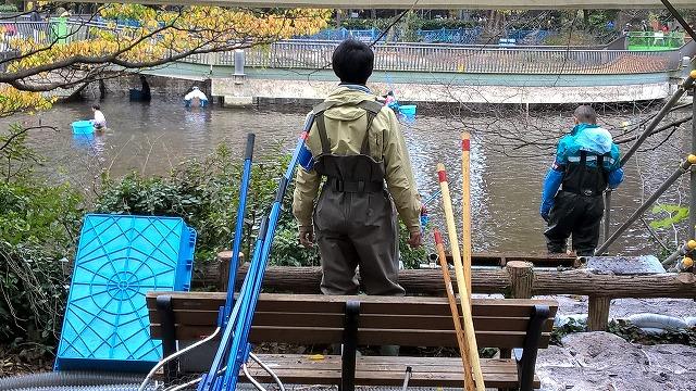 井の頭公園池 かいぼり作戦始動!