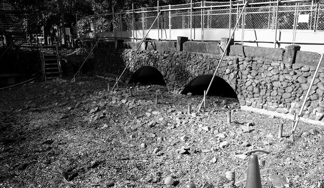 富士フイルム X-T10 : 井の頭公園のかいぼり風景をモノクロで (3/3)